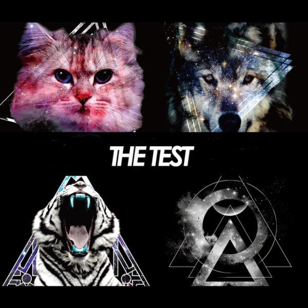 【THE TEST】ハイネックスウェット